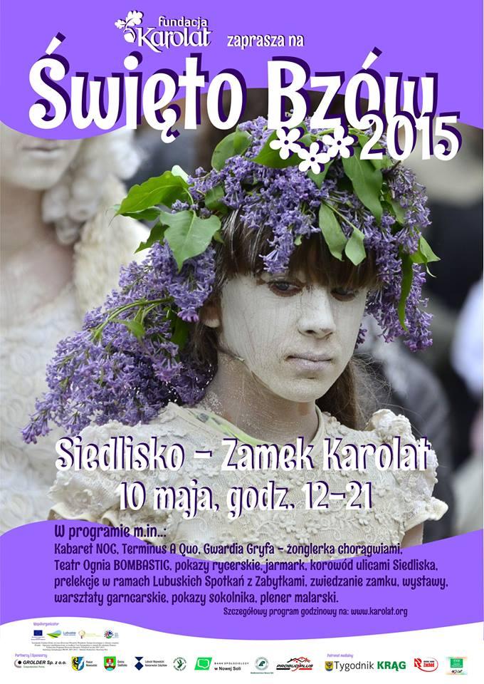 Swieto-Bzow-2015-plakat